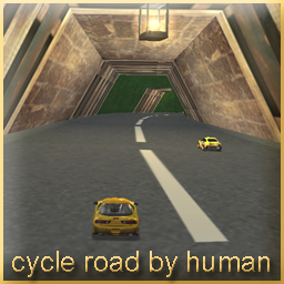 Cycle Road