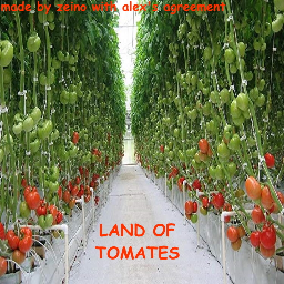 BLURSED LAND OF TOMATOES
